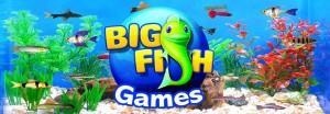 Profitez du code Big Fish Games