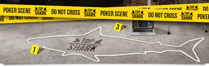 Top Shark Winamax